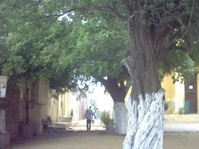 Un mes en Senegal