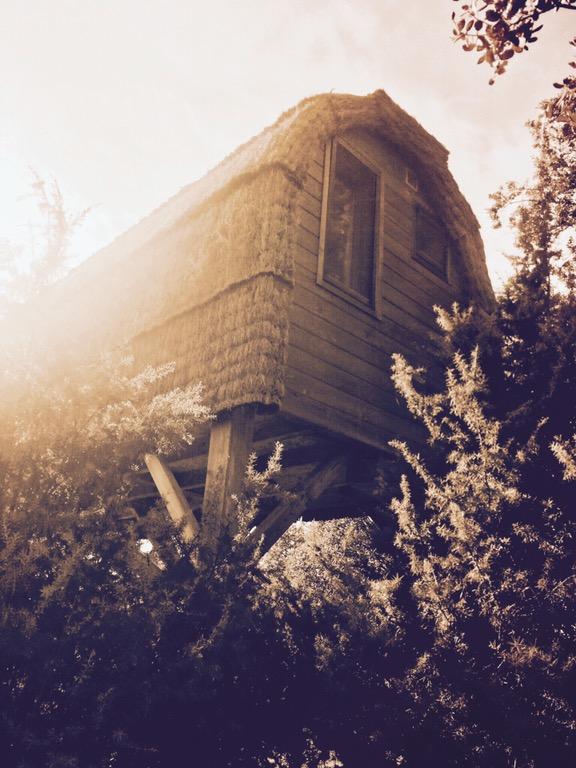 Durmiento en la casa del árbol, en Madrid