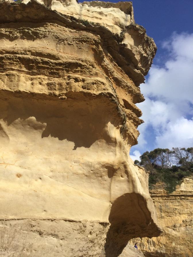 Día 3 : Ruta de Cape Otway a Allansford en Victoria, Australia