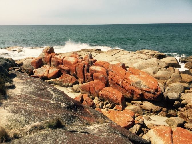 Día 5 : Ruta St Marys a Bay of Fires, Tasmania