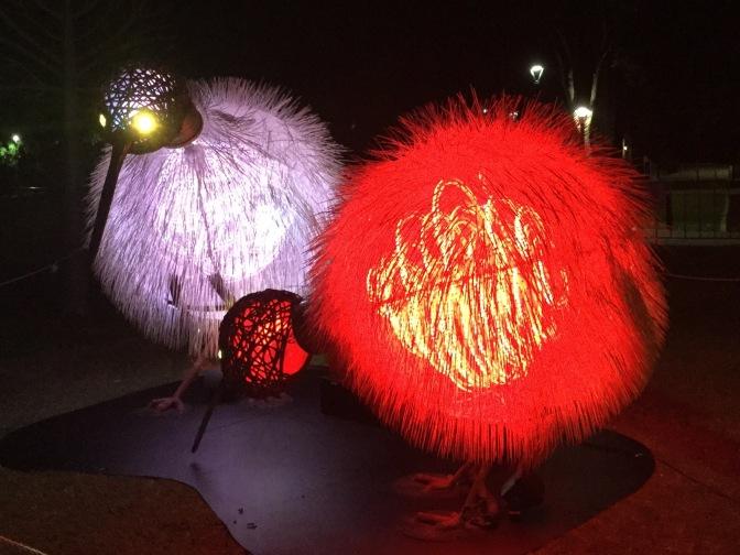 Visita el Kaleidoscope Festival en Joondalup,  Western Australia