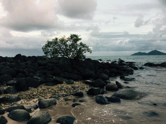 Día 4: Ruta de Cairns a Mission Beach, Australia