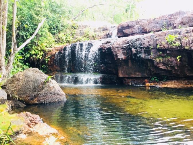 Visita al Litchfield Park, Australia