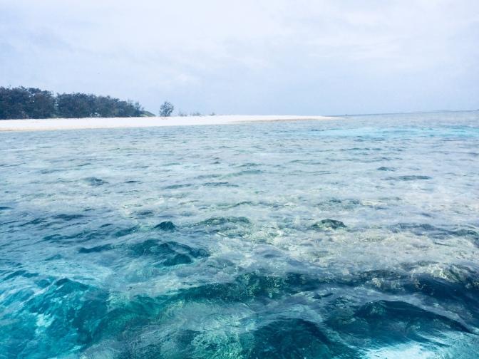 Día 12 : Visita a Lady Musgrave Island, Australia